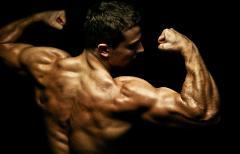bodybuilder-240x154